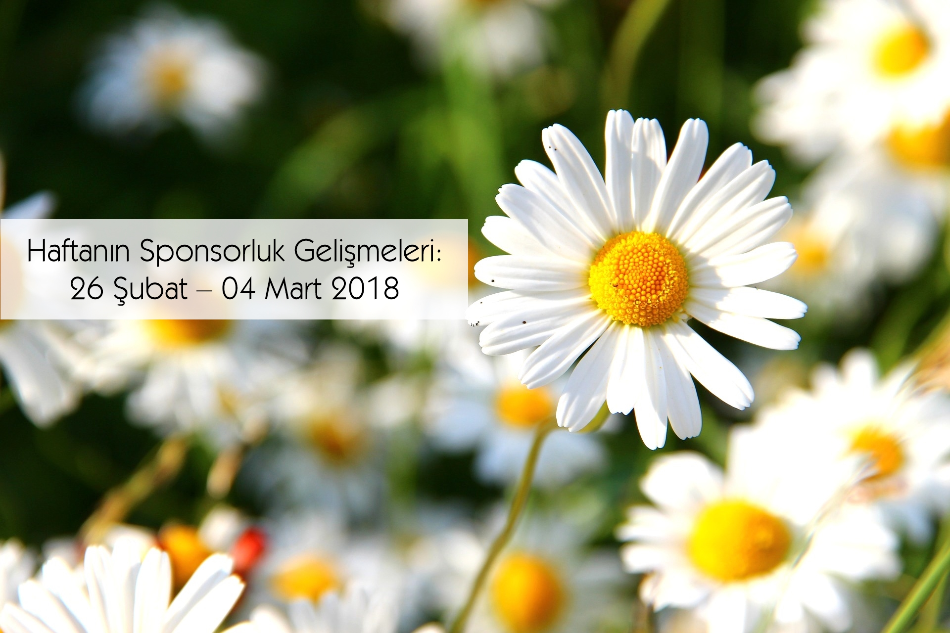Haftanın Sponsorluk Gelişmeleri: 26 Şubat – 04 Mart 2018