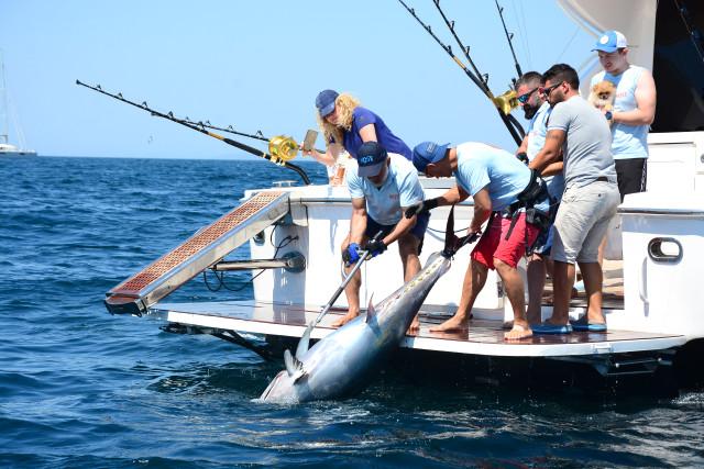 3. Most Bodrum Sportif Balık Turnuvası Sponsorları